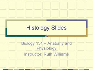 Histology Slides Biology 131 Anatomy and Physiology Instructor