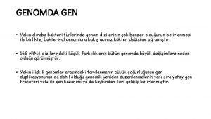 GENOMDA GEN Yakn akraba bakteri trlerinde genom dizilerinin
