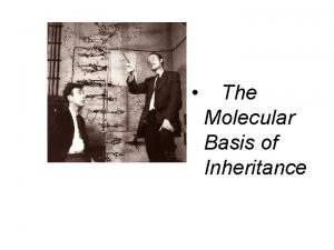 The Molecular Basis of Inheritance The Genetic Material