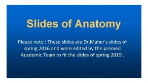 Slides of Anatomy Please note These slides are