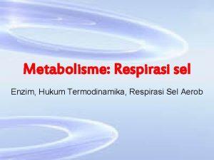 Metabolisme Respirasi sel Enzim Hukum Termodinamika Respirasi Sel