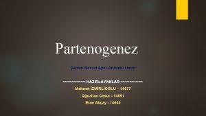 Partenogenez ankr Nevzat Ayaz Anadolu Lisesi HAZIRLAYANLAR Mehmet