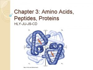 Chapter 3 Amino Acids Peptides Proteins HLYJUJSCD Amino