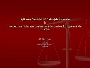 Aplicarea Dreptului UE Instanele naionale Procedura hotrrii preliminare