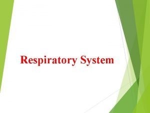 Respiratory System Drugs affect respiratory system belong to