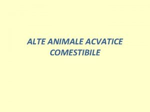 ALTE ANIMALE ACVATICE COMESTIBILE Specii acvatice consumate broatele