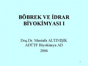 BBREK VE DRAR BYOKMYASI I Do Dr Mustafa