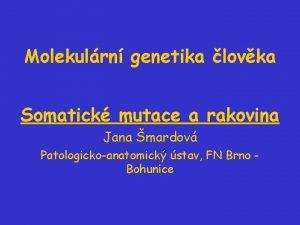 Molekulrn genetika lovka Somatick mutace a rakovina Jana