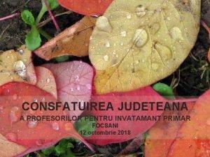CONSFATUIREA JUDETEANA A PROFESORILOR PENTRU INVATAMANT PRIMAR FOCSANI