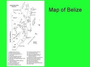 Map of Belize Bird Identification Bird Identification Habitat