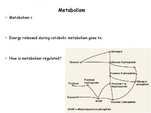 Metabolism Metabolism Energy released during catabolic metabolism goes