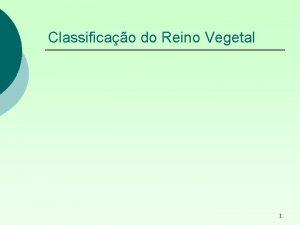 Classificao do Reino Vegetal 1 REINO VEGETAL Organismos