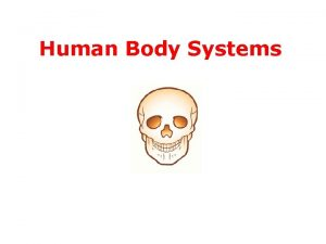 Human Body Systems Human Body Systems THE DR