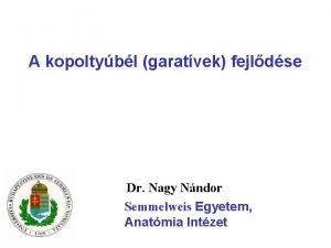 A kopoltybl garatvek fejldse Dr Nagy Nndor Semmelweis