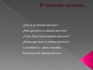 El sistema nervioso Qu es el sistema nervioso