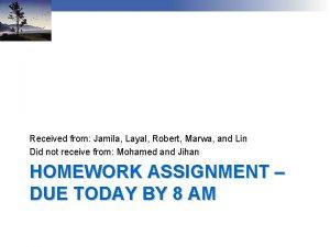Received from Jamila Layal Robert Marwa and Lin