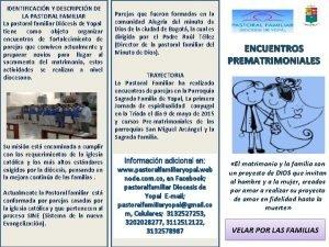 IDENTIFICACIN Y DESCRIPCIN DE LA PASTORAL FAMILIAR La