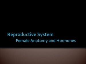 Reproductive System Female Anatomy and Hormones Female Anatomy
