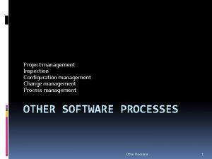 Project management Inspection Configuration management Change management Process