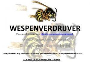 WESPENVERDRIJVER Powerpoint gemaakt door http www wespenbestrijding net