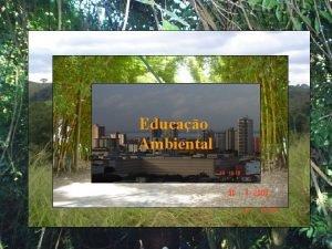 Educao Ambiental Porque Educao Ambiental hoje Entender a