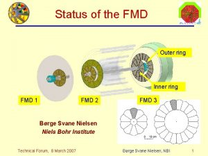 Status of the FMD Outer ring Inner ring