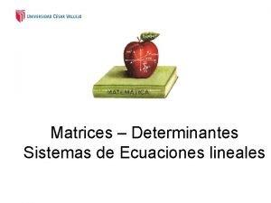 Matrices Determinantes Sistemas de Ecuaciones lineales Definicin Una