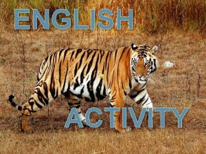 ENGLISH Save Tigers ACTIVITY Given by Mr Payal