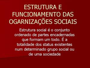 ESTRUTURA E FUNCIONAMENTO DAS OGARNIZAES SOCIAIS Estrutura social
