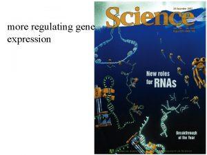 more regulating gene expression Gene Expression is controlled