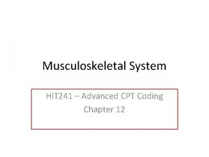 Musculoskeletal System HIT 241 Advanced CPT Coding Chapter