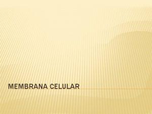MEMBRANA CELULAR MEMBRANA CELULAR A membrana celular a