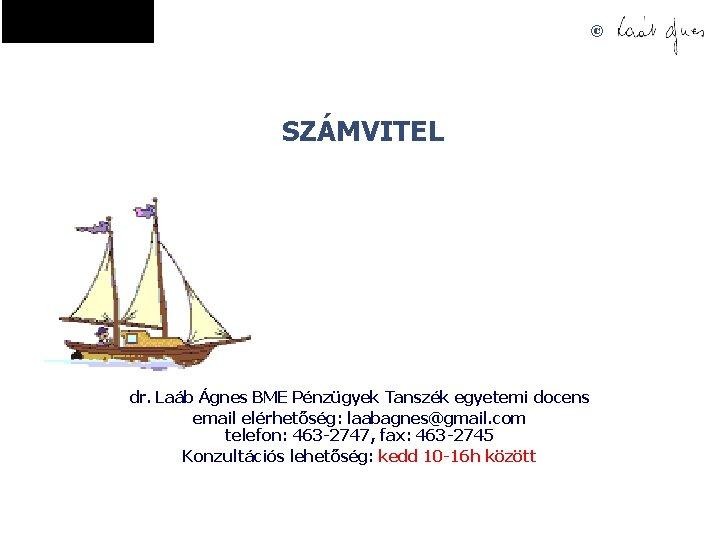 SZMVITEL dr Lab gnes BME Pnzgyek Tanszk egyetemi