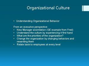 Organizational Culture Understanding Organizational Behavior From an executive