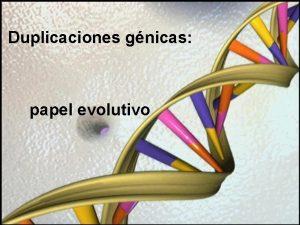 Duplicaciones gnicas papel evolutivo Introduccin Casi todos los