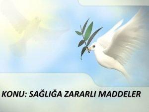 KONU SALIA ZARARLI MADDELER SGARADA BULUNAN ZEHRL MADDELERDEN