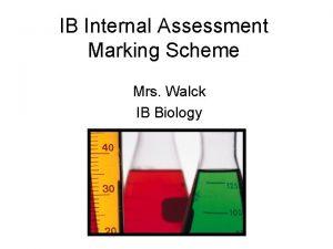 IB Internal Assessment Marking Scheme Mrs Walck IB