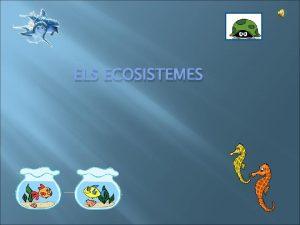 ELS ECOSISTEMES ELS ECOSISTEMES En tots els ecosistemes