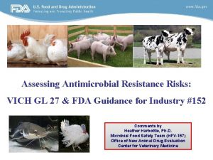 Assessing Antimicrobial Resistance Risks VICH GL 27 FDA
