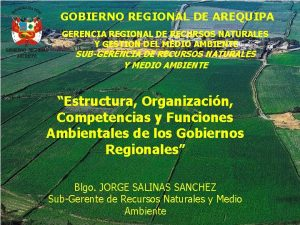 GOBIERNO REGIONAL DE AREQUIPA GERENCIA REGIONAL DE RECURSOS