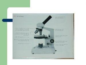 Werken met de microscoop Begin altijd met de