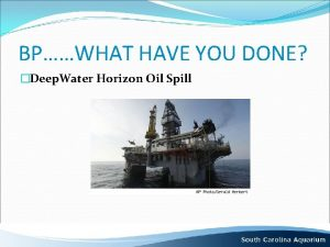 BPWHAT HAVE YOU DONE Deep Water Horizon Oil