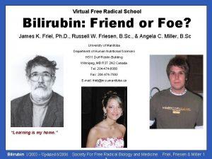 Virtual Free Radical School Bilirubin Friend or Foe