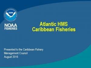 Atlantic HMS Caribbean Fisheries Presented to the Caribbean