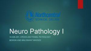 Neuro Pathology I 10 526 201 CROSSSECTIONAL PATHOLOGY