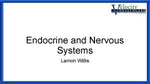 Endocrine and Nervous Systems Lamon Willis Endocrine Endocrine