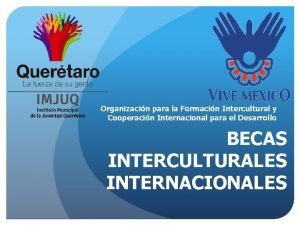Organizacin para la Formacin Intercultural y Cooperacin Internacional
