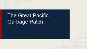The Great Pacific Garbage Patch Belen What is