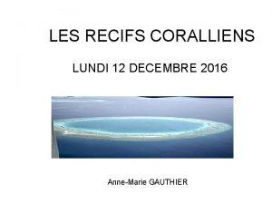 LES RECIFS CORALLIENS LUNDI 12 DECEMBRE 2016 AnneMarie