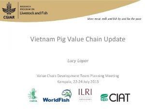 Vietnam Pig Value Chain Update Lucy Lapar Value